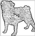 Pug In Words